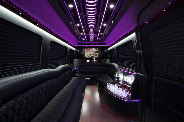 12 Passenger Party Buses Tampa