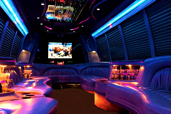 Tampa 18 Passenger Party Bus